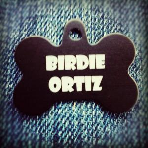 Birdie Ortiz #gypsydogops