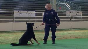 dpd-k-9-training